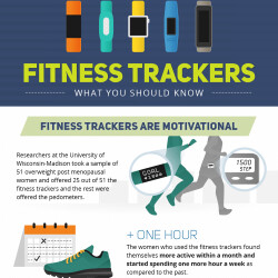 This infographic will tell you everything you wanted to know about 2016 fitness trackers