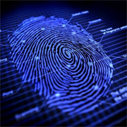 Fingerprint scanners to become even more ubiquitous on smartphones in 2017