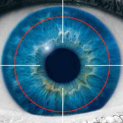 Iris scanners to become more prevalent in smartphones; feature will drive a rise in mobile payments