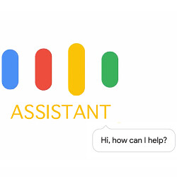 Google Assistant: what