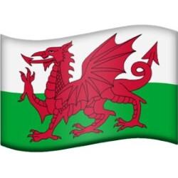Regional flags Emoji might soon be a thing