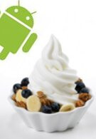 Next version of Android will be called Froyo?