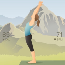 5 excellent yoga training apps for Android and iOS