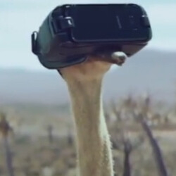 We Asked 5 Wild Animals What They Thought About the New Samsung Galaxy S8