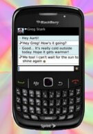 BlackBerry Curve 8530 for Sprint gets updated to OS 5.0.0.459