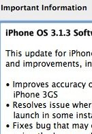 Only 14 percent of iPhone owners upgraded to OS 3.1.3