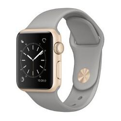 Apple sold $4.9 billion worth of the Apple Watch last year?