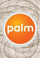 Palm updates its guidance for its fiscal year 2010