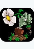 Plants vs. Zombies for the iPhone test