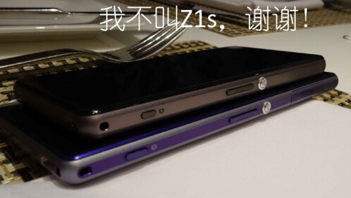 It will keep the OmniBalance Sony design