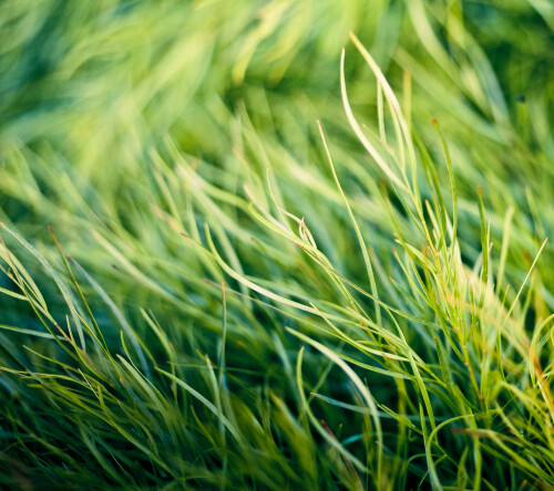 HTC One M8 official wallpapers
