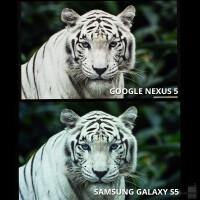 Nexus-5-vs-Galaxy-S5-screen2.jpg