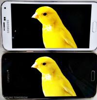 Samsung-Quad-HD-vs-Full-HD-Galaxy-S5