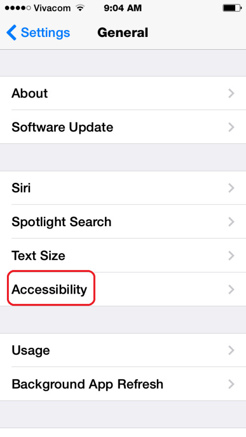 Navigate to the Accessibility tab