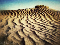 12-Christmas-Valley-Sand-Dune.jpg