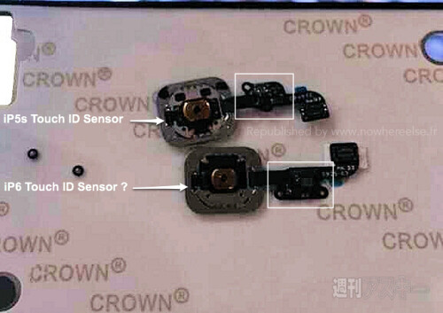 iPhone 6 Touch ID sensor pics leak