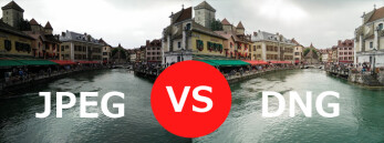 Raw (DNG) vs JPEG on a smartphone: comparison images