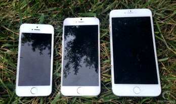 """Educated forecast points to 750x1334 pixels panel for the 4.7"""" iPhone 6, 1242x2208 resolution for the 5.5-incher"""