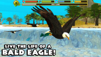 eaglesimulator