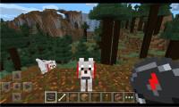 Minecraft-Pocket-Windows-Phone-03