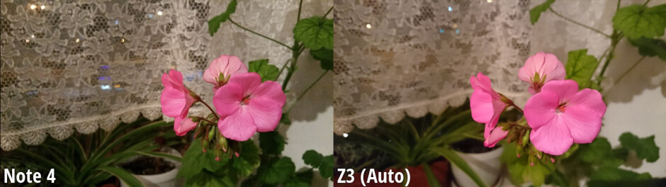 Side-by-side view - Samsung Galaxy Note 4 scores a flawless victory against the Xperia Z3 in our blind camera comparison