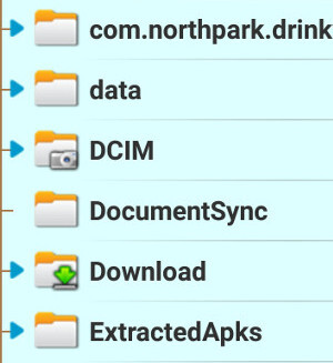 How to find downloaded files on Android