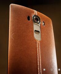 lg-brown-2.jpg
