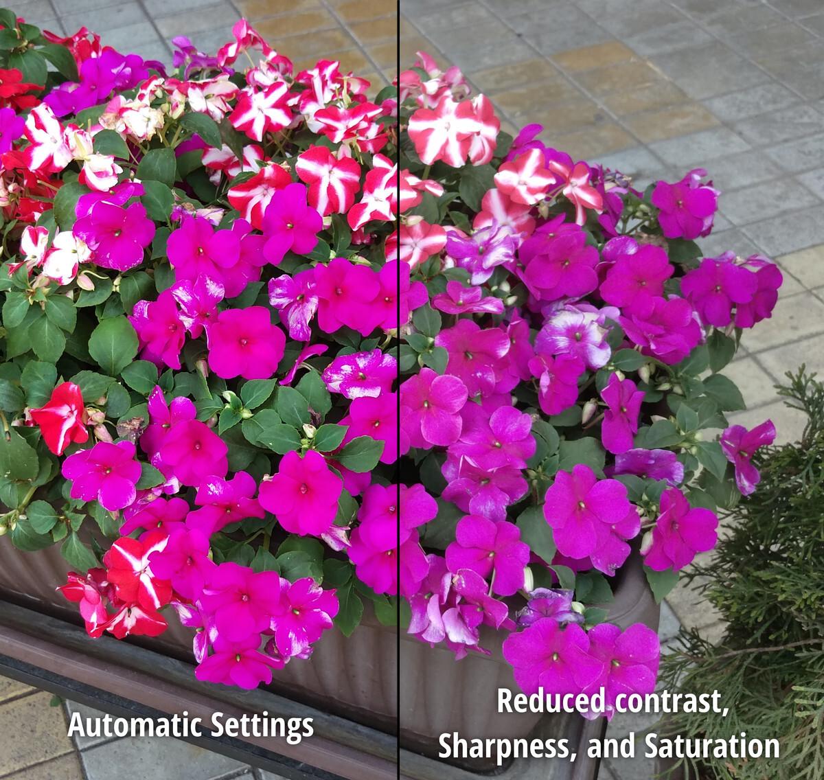 Regolazione delle impostazioni di immagine: saturazione, nitidezza, contrasto