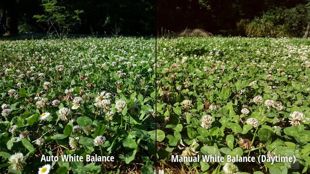 Bilanciamento del bianco automatico vs bilanciamento del bianco corretto
