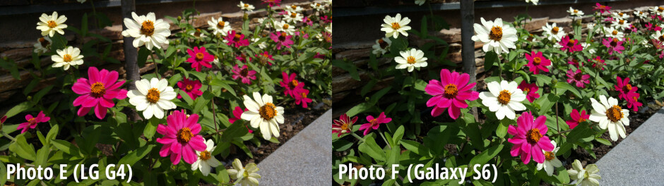 Side-by-side preview - Samsung Galaxy S6 wins another blind camera comparison, LG G4 is close second