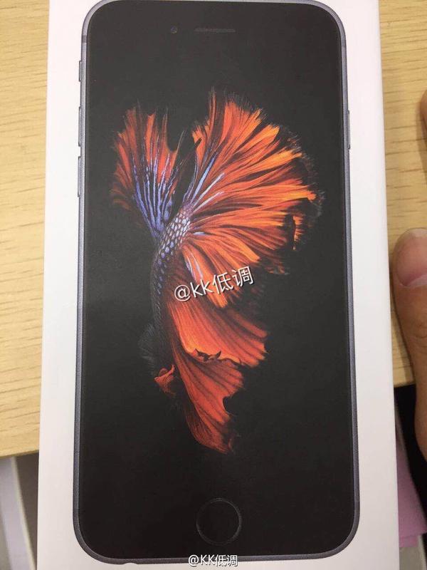 slideshow wallpaper iphone 4s