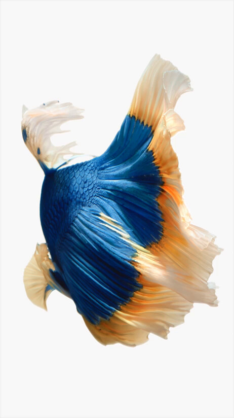 iOS 9 wallpapers