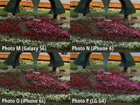 crop12-final.jpg