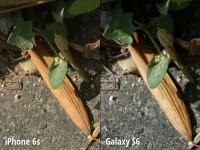 crop9-6.png