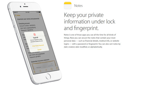 Notes gives you a secure place to keep account numbers, financial data and more