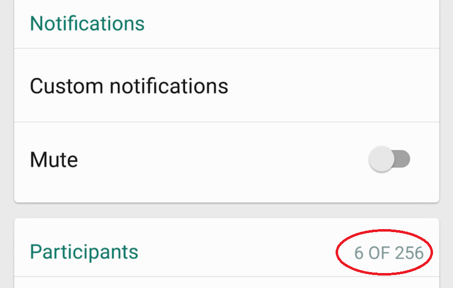 WhatsApp beta raises the group chat cap from 100 people to 256 - WhatsApp raises its group chat cap to 256 people from 100