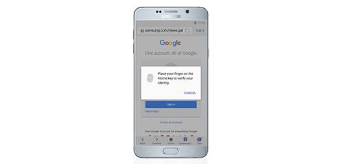 Secret browsing mode with fingerprint authentication