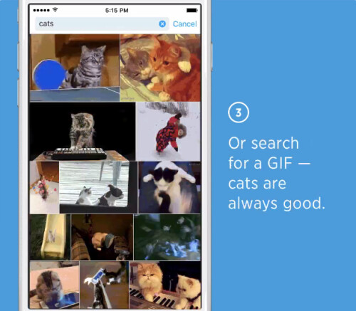 Twitter makes it easier to find GIFs for your tweets and Direct Messages