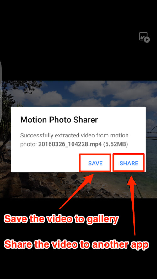 Save the video to your gallery or share to a different app