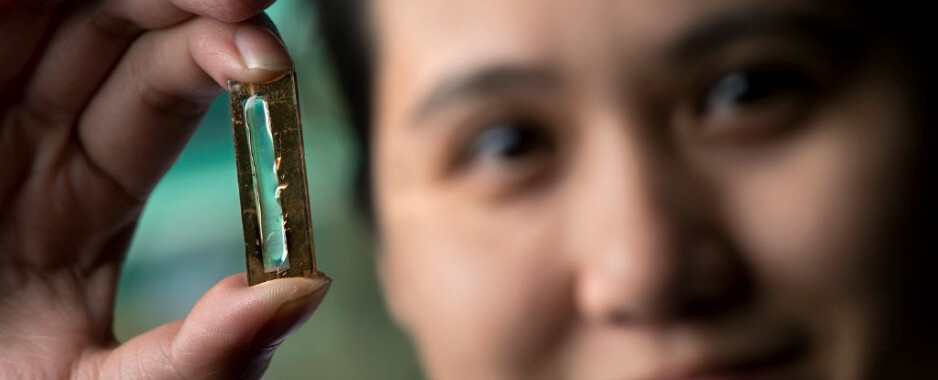 """Photo credit Steve Zylius, UC Irvine - Whoops! Researchers at UC Irvine """"accidentally"""" create a battery with virtually no limit to recharge cycles"""