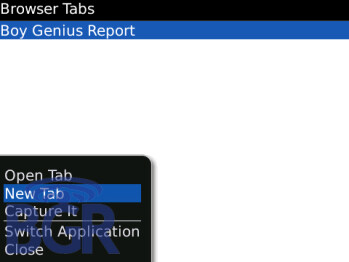 Tabbed Browsing a feature of BlackBerry OS 5.0?