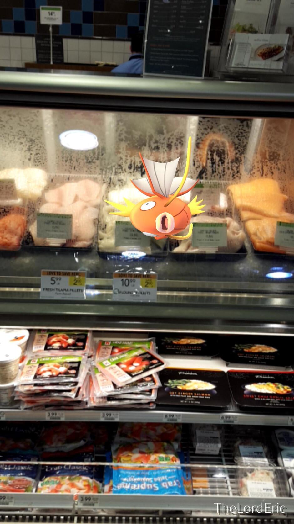 The weirdest places to catch Pokemon in Pokemon GO