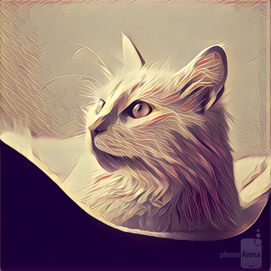 Mr. Cat here is a good example of what happens when you have a detailed subject and a clean background - good contrast, that's what! - Prisma: Turning mundane photos into beautiful works of art