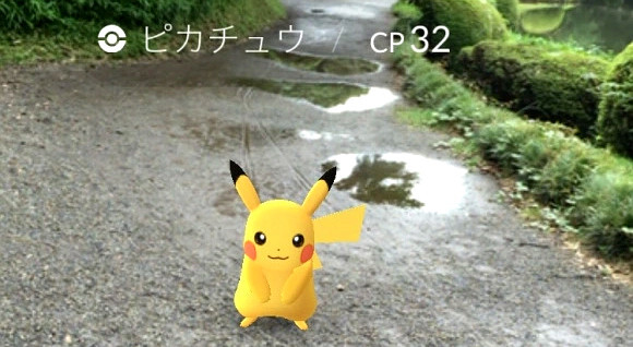 Pikachu forest in Tokyo, Japan - The best Pokémon Go tracking and radar apps for Android