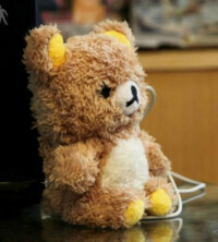 Teddy-bear-04.jpg