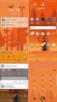 Orange-Evening.jpg