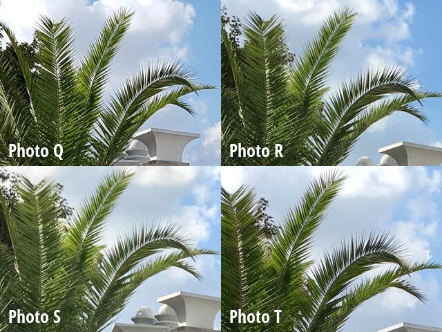 Scene 5 Closeups