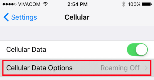 Tap on 'Cellular Data Options'