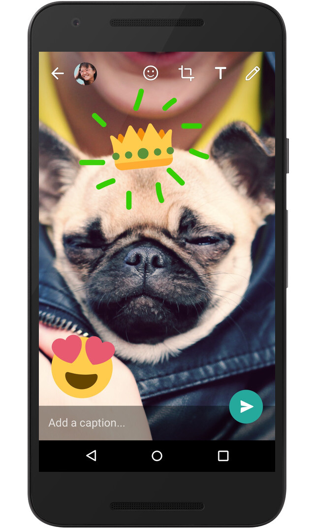 GIF sharing and customization finally comes to WhatsApp