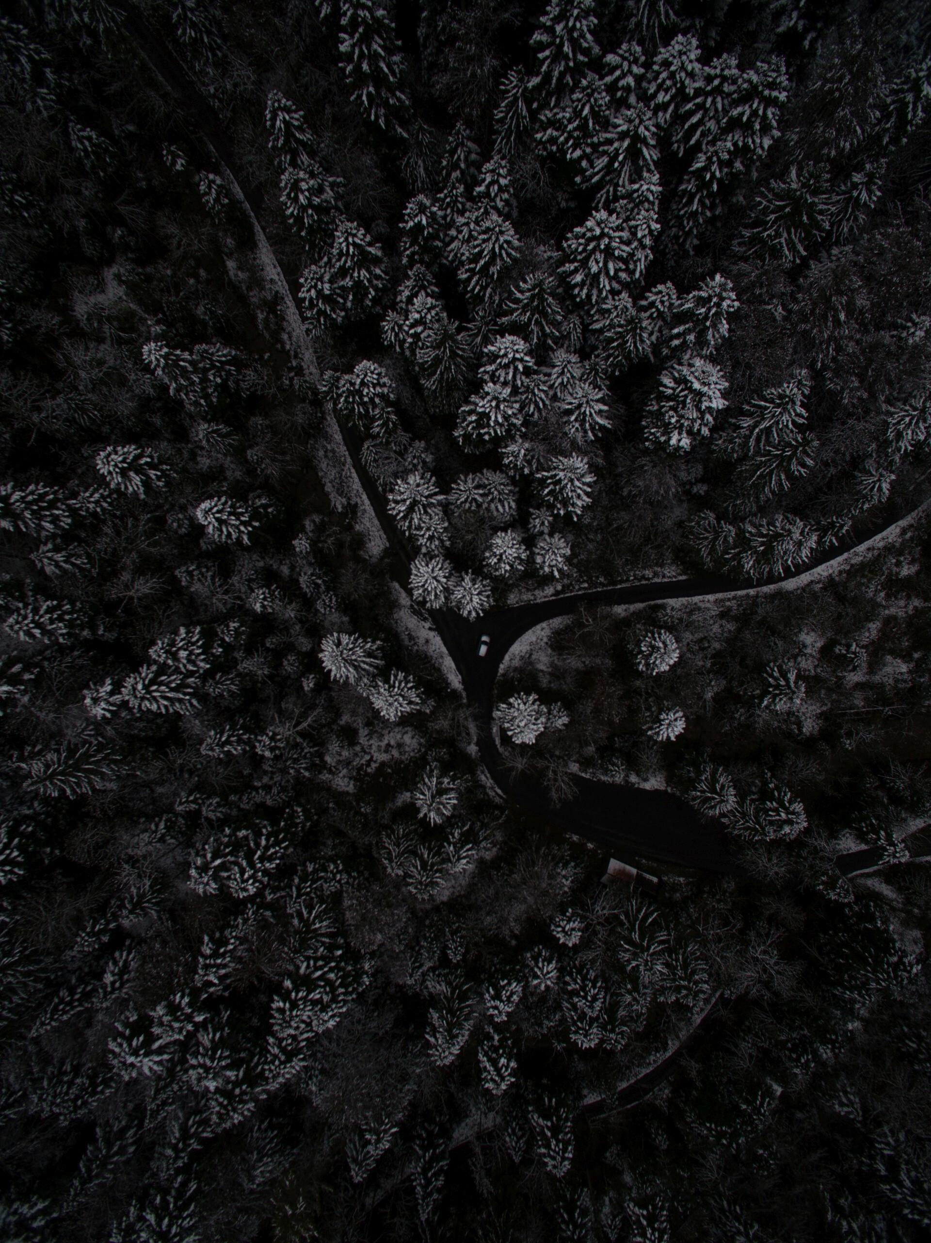 dark amoled wallpapers